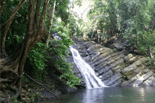 Waterfall Jaco Beach Adventure tours